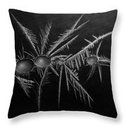 Ice Crystals ... Throw Pillow