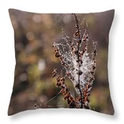 Ice Crystals On Dried Wild Flower Throw Pillow