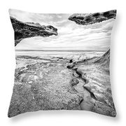 Ice Forms Throw Pillow