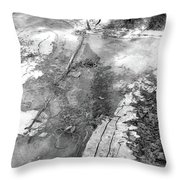 Ice In The Forest  Throw Pillow