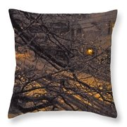 Ice In The Night Throw Pillow