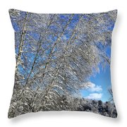 Ice Laden Birches Throw Pillow
