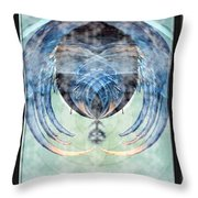 Ice Layered Effect And Framed Throw Pillow