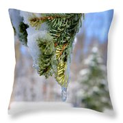 Ice Melt Throw Pillow