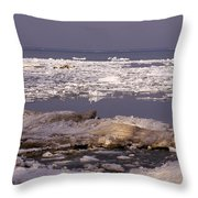 Ice On Lake Huron Throw Pillow