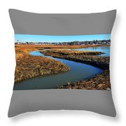 Ice On The Saltmarsh  Throw Pillow