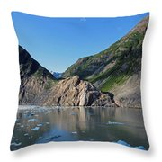 Ice On The Water Throw Pillow