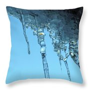 Ice Photo 2 Throw Pillow