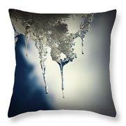 Ice Photo 4 Throw Pillow