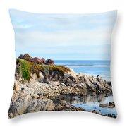 Ice Plant Along The Monterey Shore 2 Throw Pillow