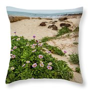 Ice Plant Booms On Pebble Beach Throw Pillow