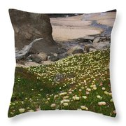 Ice Plants On Moss Beach Throw Pillow