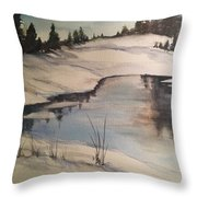 Ice Pond Throw Pillow