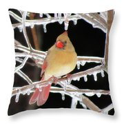 Ice Princess Throw Pillow