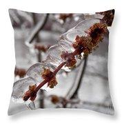 Ice Rain In Springtime Throw Pillow
