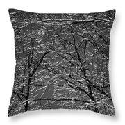 Ice Rain Throw Pillow