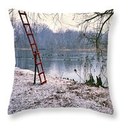 Ice Rescue Ladder  Throw Pillow