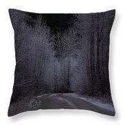 Ice Road Throw Pillow