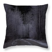 Ice Road Throw Pillow