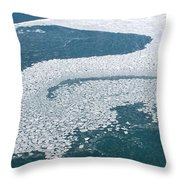 Ice Shelf Throw Pillow