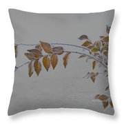 Ice Shell Throw Pillow
