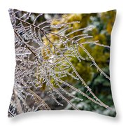 Ice Storm 2 Throw Pillow