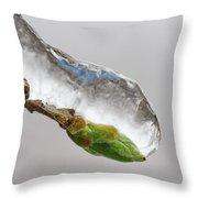 Ice Storm Buds Throw Pillow