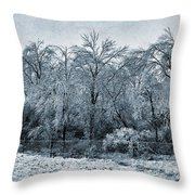 Ice Storm In The Flint Hills No 1 2724 Throw Pillow