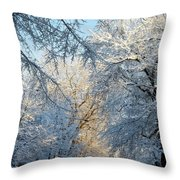 Ice Storm On The 6th IIi Throw Pillow