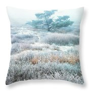 Ice Tree Shenandoah National Park Throw Pillow by Thomas R Fletcher