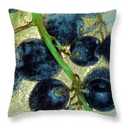 Ice Wine Throw Pillow by Michal Boubin