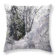 Ice Wonderland Throw Pillow