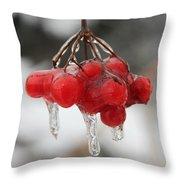 Ice Wrapped Berries Throw Pillow
