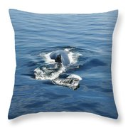 Iceberg And Humpback Throw Pillow