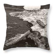 Iceberg Silo Throw Pillow