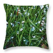 Iceblue Squill Throw Pillow