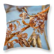 Iced Gold Throw Pillow
