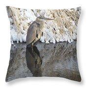 Iced Heron Throw Pillow