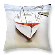 Iced In Throw Pillow