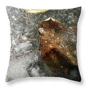 Iced Leaf Throw Pillow