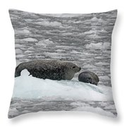 Iced Mother Throw Pillow