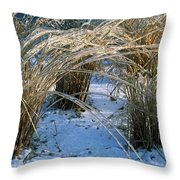 Iced Ornamental Grass Throw Pillow