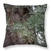 Iced Pine Throw Pillow