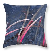 Iced Pond Throw Pillow