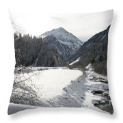 Iced River Throw Pillow