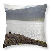 Iceland 12 Throw Pillow
