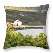 Iceland 20 Throw Pillow