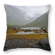 Iceland 36 Throw Pillow