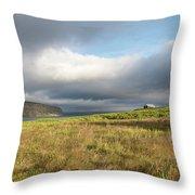 Iceland 37 Throw Pillow