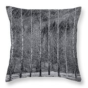 Iceland Landscape # 10 Throw Pillow